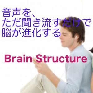 BrainS01