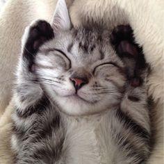 成功する人は、笑顔が素敵です!